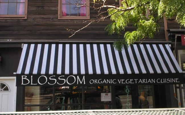 Blossom Retractable Awning